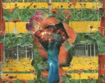 Collage (Poppy field nebula)