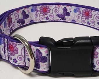 dog collar, purple butterflies, butterflies, butterfly dog collar, butterfly collar