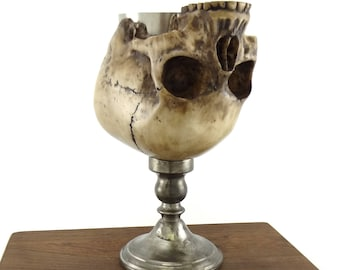 Resin and pewter skull goblet / chalice