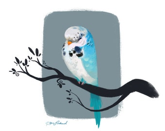 Art Print Parakeet/Budgie