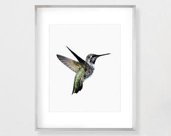 Nursery Art, Print, Art, Poster, Instant Download, Watercolor Print, Wall Art, Art Print, Hummingbird Art, Hummingbird Print, Bird Print