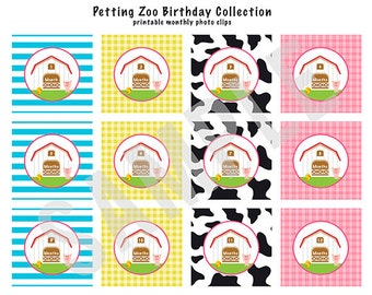 INSTANT DOWNLOAD, 1st Year Photo Clips - Milestone Tags - Petting Zoo Theme - Printable- As seen on Hostess with the Mostess