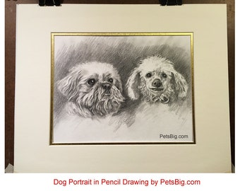 Dog portrait pencil drawing, pet portrait pencil sketch, dog art, original, dog cat black white drawing, unique pet lovers gift, PetsBig