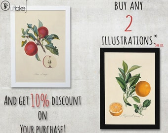 When You buy two illustrations, then this will be handy. Or 10% discount on Your purchase. - FREE SHIPPING WORLDWIDE