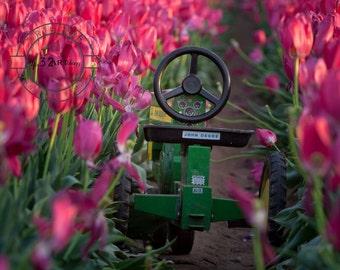 John Deere, Tulip Fields, Kids Room Art, Photography