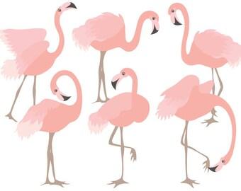 Flamingo Clipart - Digital Vector Flamingo, Bird, Exotic, Coral Flamingo Clip Art