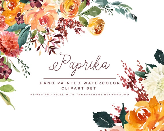 Watercolor Clipart Paprika Hand Painted Watercolour Florals