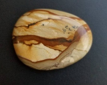 58.5 owyhee cripple creek picture jasper cabachon