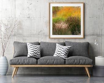 "West Coast Landscape Photography, Large Wall Art Print, Nature Flower Photography, Fine Art Print, Rocky Mountain Flowers, ""Grass Pastel"""