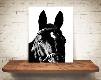 Horse Photograph - Fine Art Print - Black & White Photography - Equine Wall Art - Wall Decor -  Horse Pictures - Farmhouse Decor - Horses
