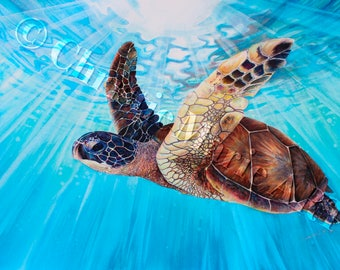 Aloha Spirit 5 Tropical Sea Turtle Art Card watercolor Painting Framable Art print Greeting Note Cards, Hawaiian Christie Marie E Russell ©