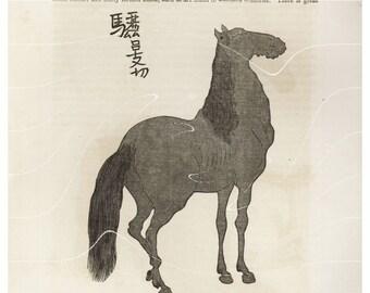 Antique Print – Perry's Expidition – Japanese Art Horse - 1852  original