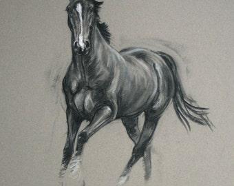 Beautiful Equine art horse art LE horse print horse gift 'Alert' from an original charcoal and chalk wall art home decor