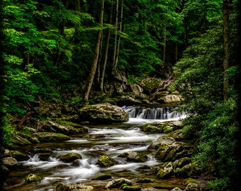 VERTICAL -- Click To See ALL. Deep Woods Smoky Mountain Stream E237