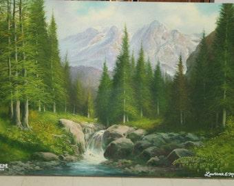 Black Spruce Alaska