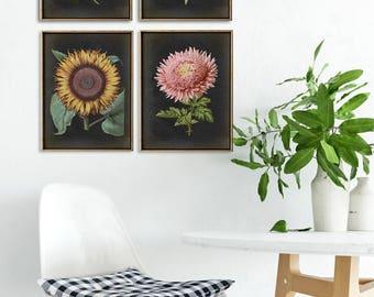 BOTANICAL Print SET of FOUR Flower Prints, Flower Poster, Flowers Painting, Plants, Vintage Botanical Art, Antique Flowers, Sunflower