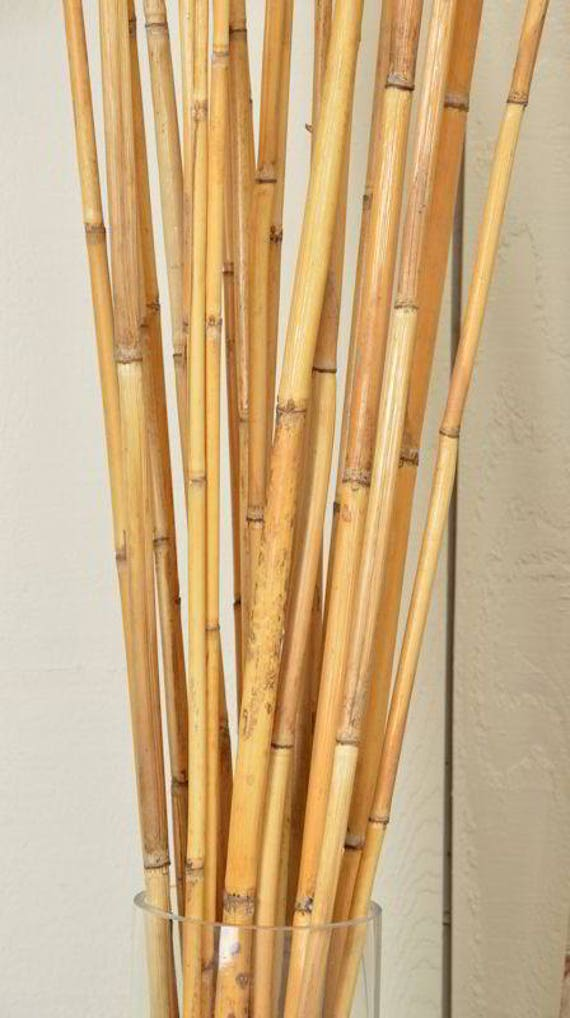 river cane bamboo dried bamboo decorative bamboo dried