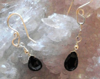 Black Garnet Briolette Earrings