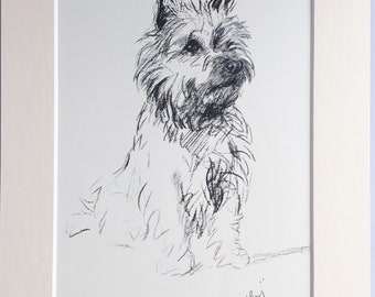 CAIRN TERRIER Vintage Mounted 1937 'Mac' Lucy Dawson Sally Cairn terrier dog plate print Unique Christmas Birthday Thanks dog lover gift