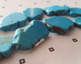 Free Form Howlite Turquoise app.23x34mm (6)