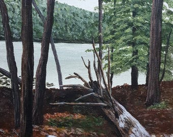 """A Walk In The Woods, 5"""" x 7"""" Framed Acrylic Painting on Canvas Board"""