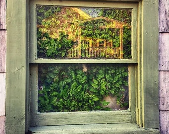Window Pane Reflection