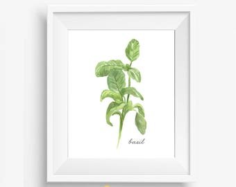 Kitchen Herbs, Basil Wall Print, Kitchen Wall Prints, Watercolor Herb Prints, Kitchen Decor, Botanical Herbs, Kitchen Art, Botanical Print