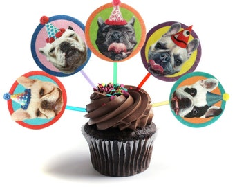French Bulldogs Cupcake Toppers - set of 6 - photo reproductions on felt - funny Frenchie portraits birthday party decor