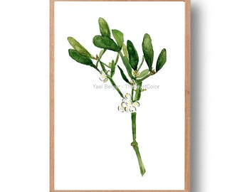 Mistletoe branch print, mistletoe branch watercolor print, modern Christmas art, botanical art, mistletoe art print, plants minimalist art