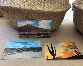 3 Vintage desert travel postcards AZ and NM