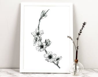 Black and White A4 Cherry Blossom Branch Fine Art Giclee Print