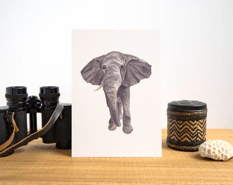 African Elephant Illustrated Watercolour A5 Print // African Animals Series // Sally the One Tusked Matriarch Elephant