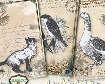 ANIMAL CARDS tags digital download printable collage sheet - embellishments diary art jewelry holder papers label craft background - ac305