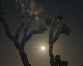Moon and Mojave, night photography, moonlight, stars, desert