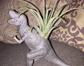 Dinosaur Planter + Air Plant