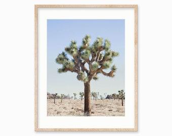 Desert Cactus Print, Joshua Tree Print, Large Wall Art Print, Cactus Photography, Boho Decor, Nature, Desert Landscape, Boho Print, JT1