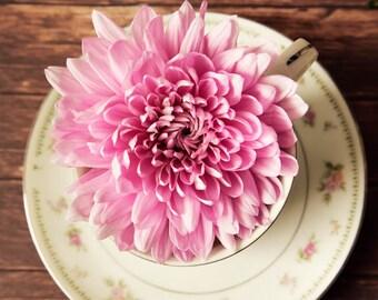still life art, tea cup and saucer, pink wall art, large wall art,  chrysanthemums, pink mums, green home decor