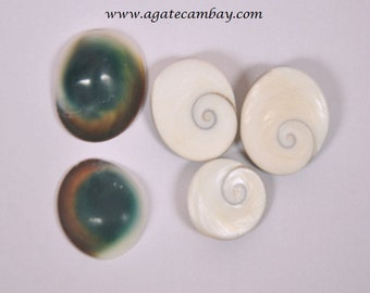 Very Rare Gomati Chakra 5 pieces of set from India.