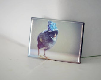 Chicks in Hats Chicken In A Blue Bandana Cute Chickens Baby Animal Magnet