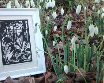 The Woodland Garden, Beth Chatto, framed limited edition Horticultural Lino cut print, woodland, great gift idea, gardener, plants, flowers.