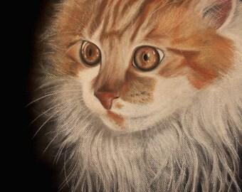 Commissioned Pet Portrait in Charcoal & Pastel