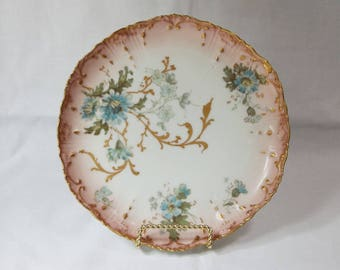 Antique Hand Painted Plate, Limoges, France. C. 1900.
