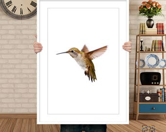 Hummingbird Print, Colibri Print, Hummingbird Art, Hummingbird Wall Art, Bird Print, Colibri Photo, Bird Wall Art, Colibri Poster, Bird Art