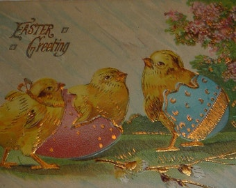 Chicks With Pink and Blue Eggs Antique Easter Postcard
