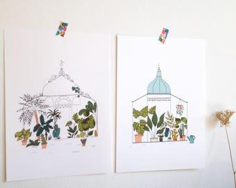 Box 3 posters Serre tropicale, jardin botanique, serre botanique, cactus, succulents, palmiers, monstera - affiche serre, jardin - format A4