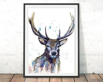 Deer Print, Deer Illustration, Stag Print, Blue Deer Framed Print, Scottish  Doe Wall Art, Deer Gift Watercolour By Katherine Williams