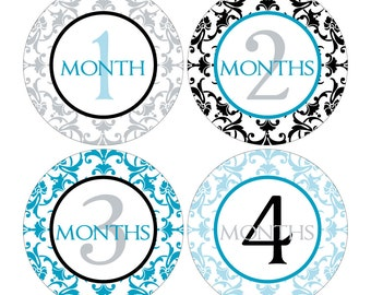 12 Monthly Baby Milestone Waterproof Glossy Stickers - Just Born - Newborn - Weekly stickers available - Design M007-09