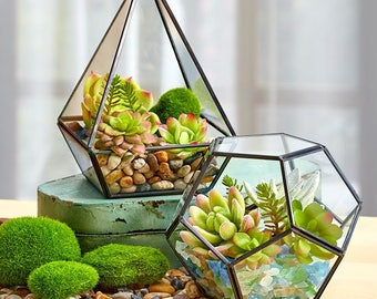 Decorative Terrariums - Orb or Teardrop-Geometric-Succulent-Home Decor-Garden-Tea Party-Shower-Father's Day-Gift
