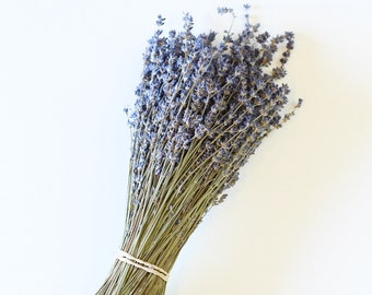 250 Stems Lavender, One Bunch, Preserved, Dry English, Dry Lavender, Wedding, Home Decor Bunch Bouquet Dried Lavender Flowers Floral