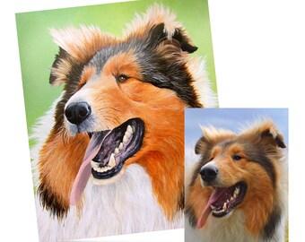 Colourful Bespoke Pet Portraiture
